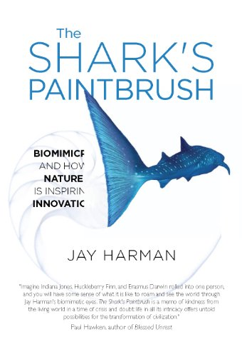 The Shark's Paintbrush by Jay Harman | books, reading, book covers, cover love