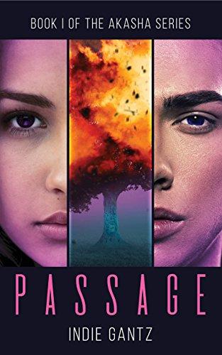 Book Cover - Passage by Indie Gantz