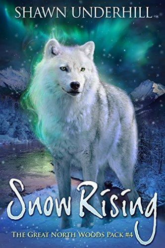 Snow Rising by Shawn Underhill
