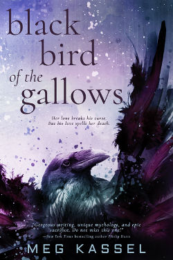 Book Review: Black Bird of the Gallows (Black Bird of the Gallows Book 1) by Meg Kassel | reading, books, book review, paranormal romance, young adult