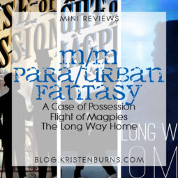 Mini Reviews: M/M Paranormal/Urban Fantasy – A Case of Possession, Flight of Magpie, The Long Way Home