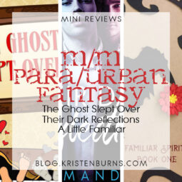 Mini Reviews: M/M Paranormal/Urban Fantasy – The Ghost Slept Over, Their Dark Reflections, A Little Familiar