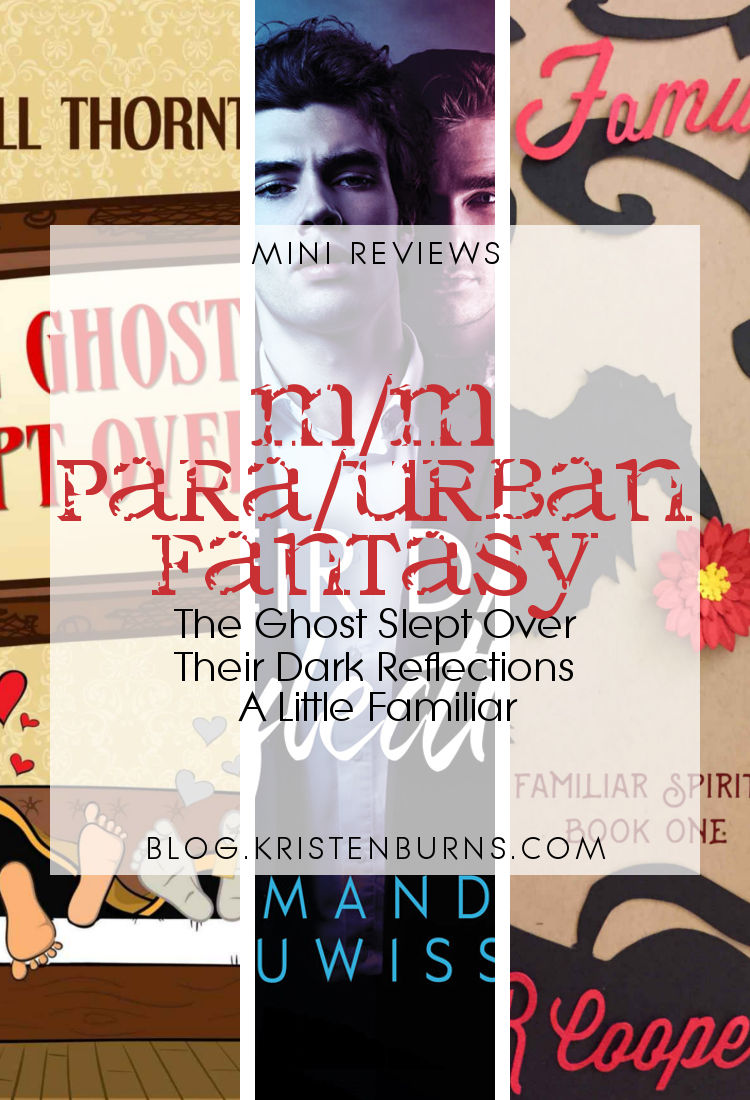 Mini Reviews: M/M Paranormal/Urban Fantasy - The Ghost Slept Over, Their Dark Reflections, A Little Familiar
