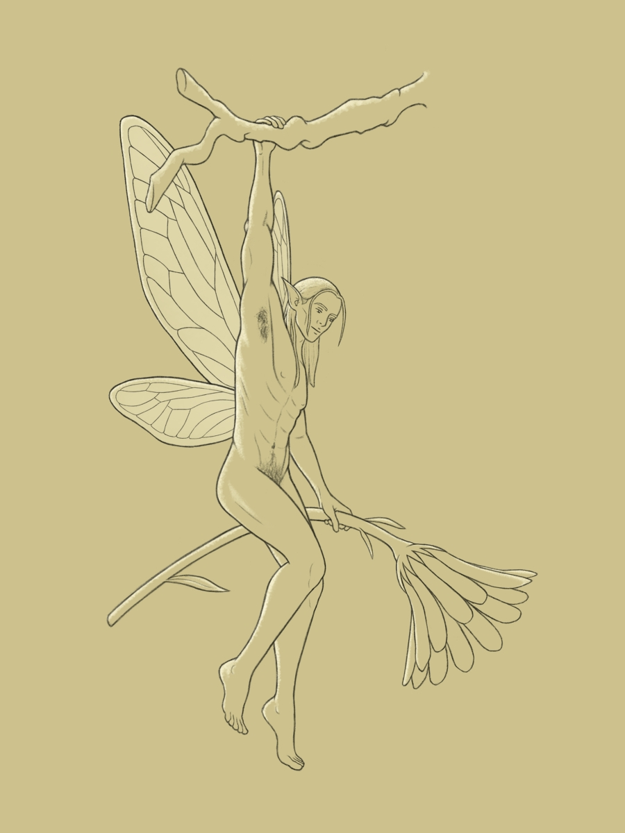 Digital line drawing of a pixie hanging by one arm from a small branch. His other arm is down and holding a flower that's as tall as he is. His body is muscular and naked, but at a slight angle with legs bent up a bit, showing only some pubic hair. His hair is long and tucked behind his pointy ear, and he's smiling serenely looking at something in the distance. His wings have a longer/larger upper part and a small lower part and resemble dragonfly wings. White highlights show that he is lit from behind.