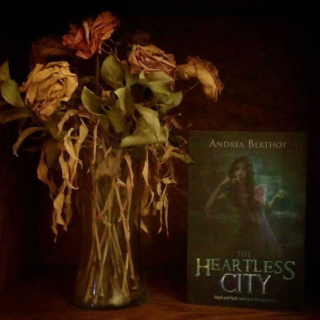 The Heartless City by Andrea Berthot