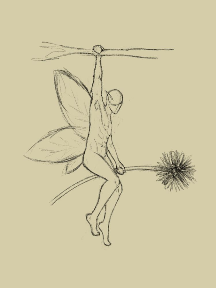 rough sketch of a faceless small winged pixie man holding a dandelion